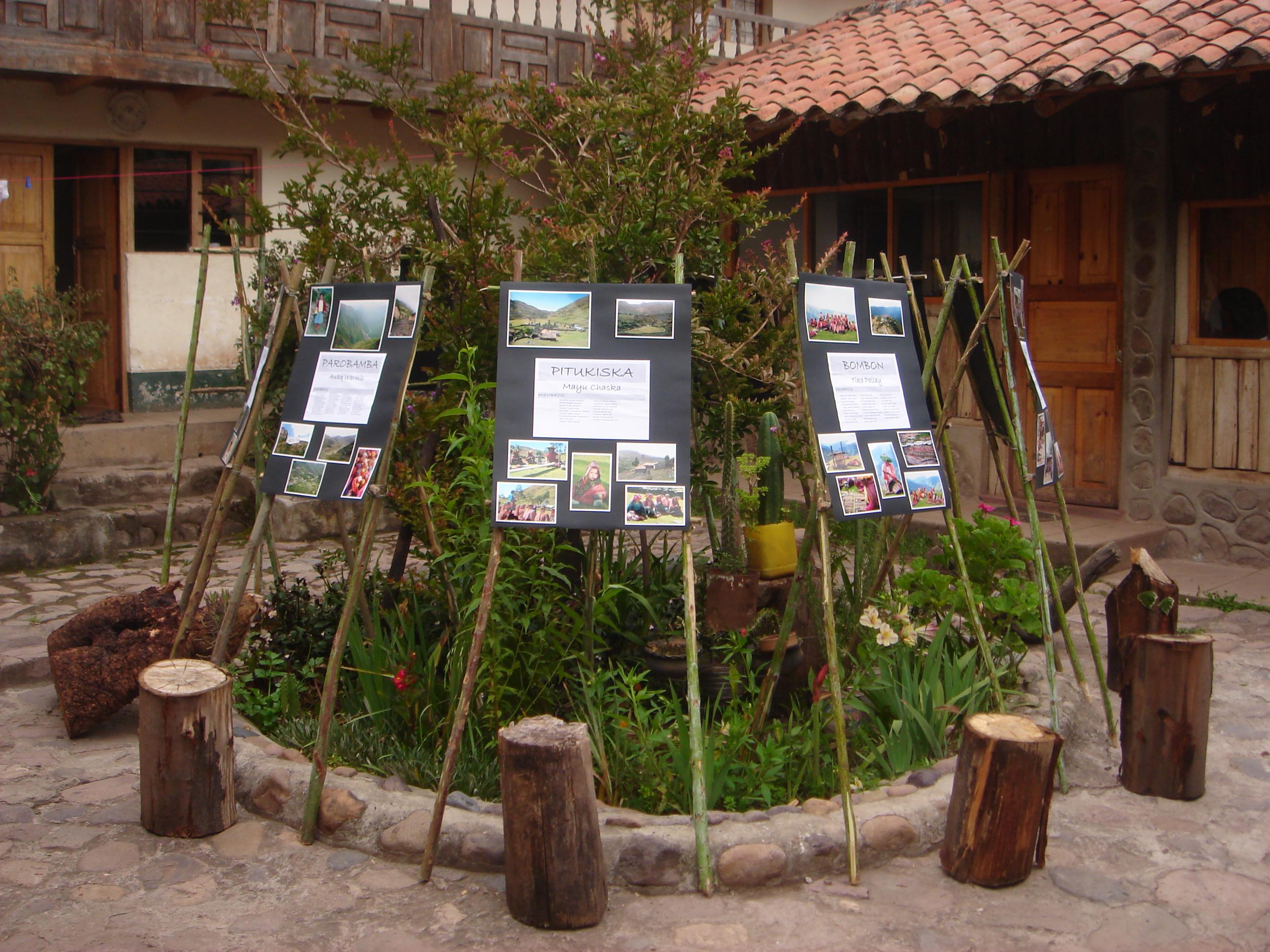 Community representation displays