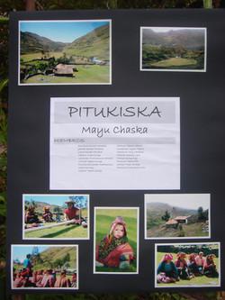 Pitukiska poster