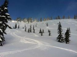 hemlock-valley-resort-accommodations-home-page
