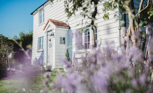 Little Lavender Cottage