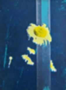 Andrea Robinson_Spring flowers grow on M