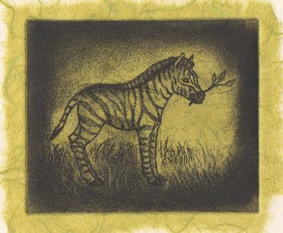 ZebraFoal.jpg