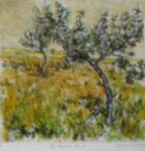 The Apple Tree.jpg