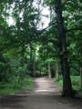 Another good run at Lydiard park thus mo