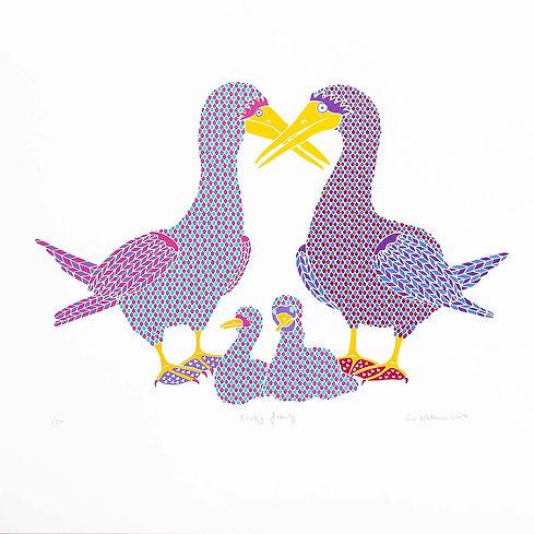 Booby family s.jpg