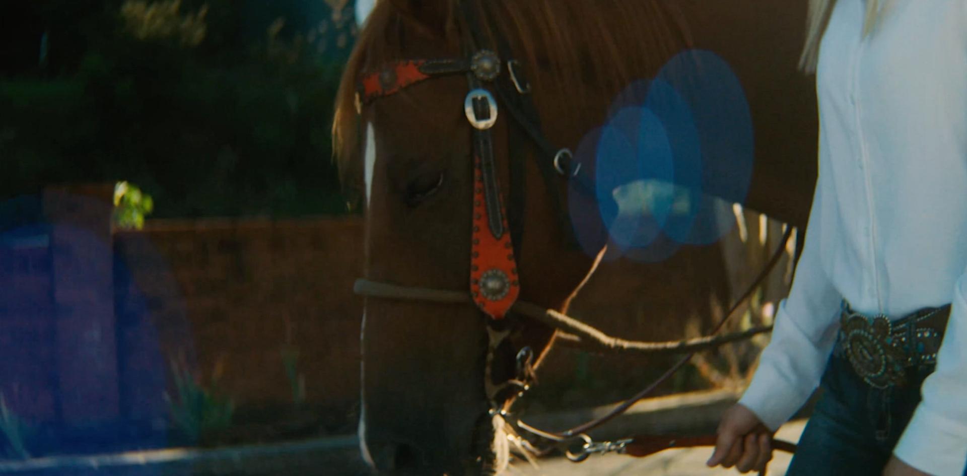 horse n girl 2.png