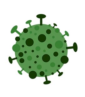 viruscorona.png