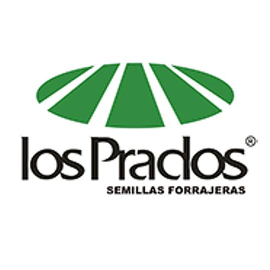 LOS PRADOS.jpg