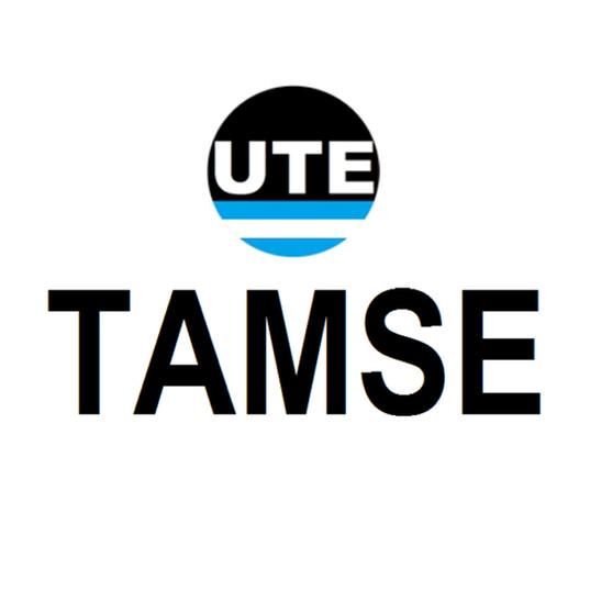 TAMSE.jpg