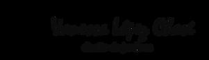 Nuevo logo VLCH.png