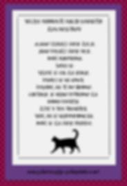 PsihoPolonica - plakat Mačji zen - natisni