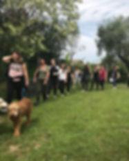 seminari cinofili cane.jpg