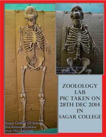 skeleton New law kb102  6h q