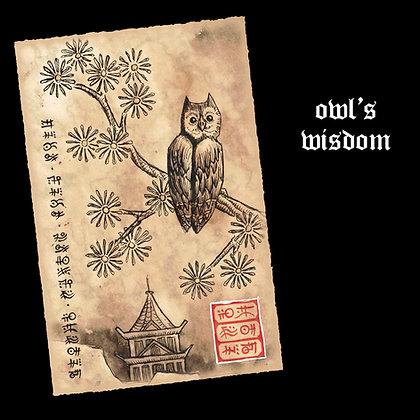 Owl's Wisdom (Druid)