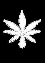 website cannabis.png
