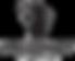 black%20hausbrandt%20logo_edited.png