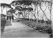 Deutsche Beteiligung Gallipoli 1915  Tarabya Deutsche Beteiligung Gallipoli 1915