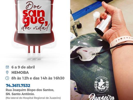 Prefeitura de Juazeiro promove campanha de doação de sangue para reforçar estoque do Hemoba