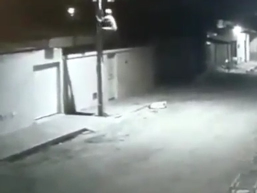 Câmera de Segurança flagra homem roubando fios da iluminação pública em Petrolina; Veja o vídeo
