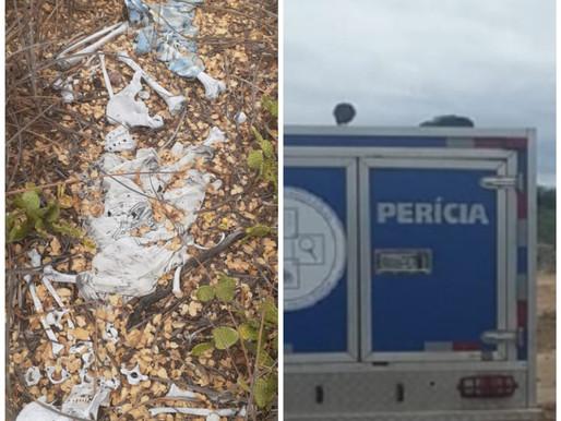Encontrada ossada humana na zona rural de Juazeiro-BA