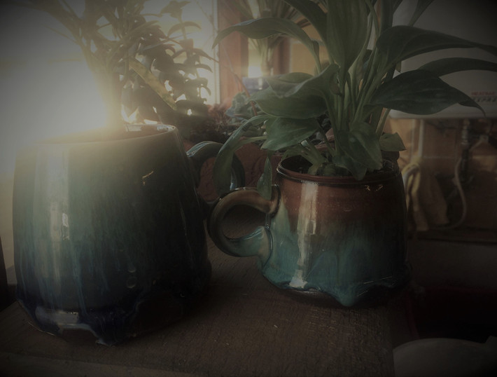 Studio plant pots!!