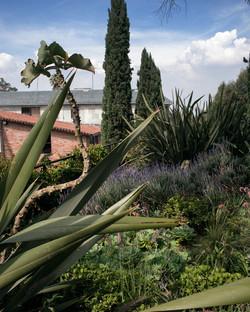 Perales - Azotea Verde