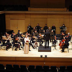 Vivaldi academy teachers in concert and professional Performances