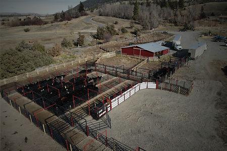 Livestock Handling Equipment.jpg
