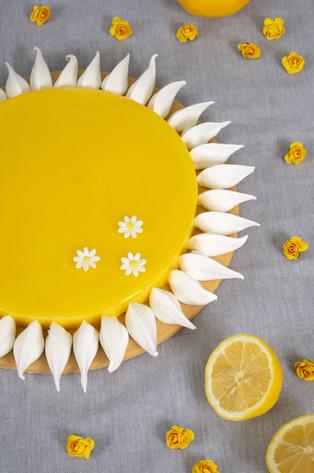 sol-limón-11.jpg