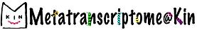 metatrans_logo.png
