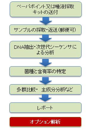 serviceflow.png