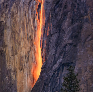 Yosemite Fire Falls 2017 (2)