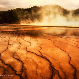 Yellowstone Bacterial Mat