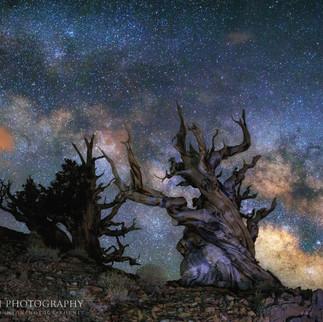 Milky Way and Methuselah