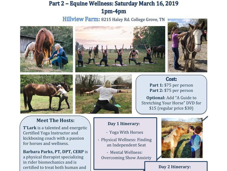 Sign up for our Equestrian Wellness Clinic!
