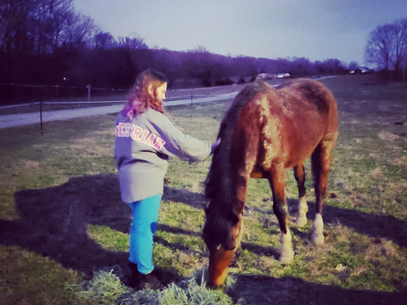 Ignore the Neighsayers: Equine Therapy is a Revelation