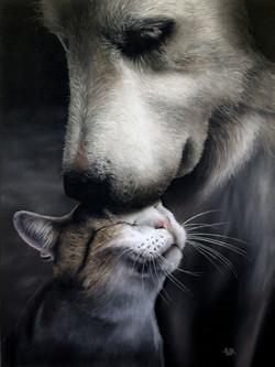 Ivan Pili - Animal stories #1