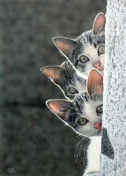 Ivan Pili - Tre gattini
