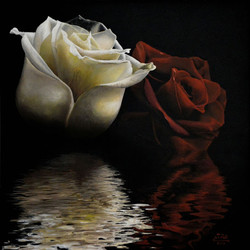 Ivan Pili - Due Rose