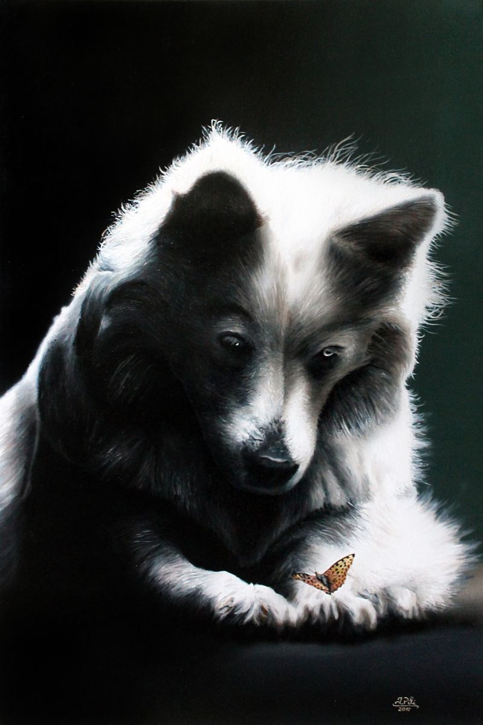 Ivan Pili - Animal stories #4
