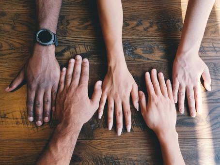 Teamcultuur | 4 successen