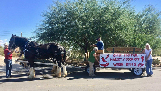Horse wagon preparing for chile festival