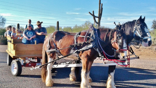Wagon Ride 2016-11-06 16.01.04.jpg