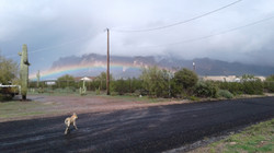 Rainbow Superstition 20170219_144854