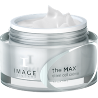 The Max Stem Cell Creme with VT