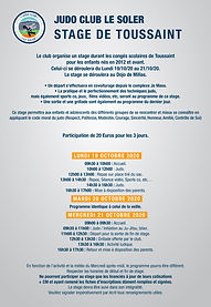 JUDO-STAGE TOUSSAINT 2020-HD.jpg