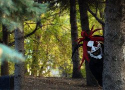 Jester Peek a Boo