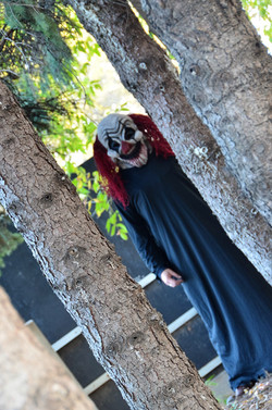 Chuckles in the Trees 2