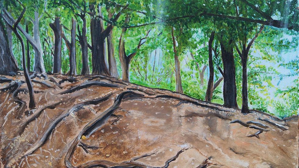 Mauritian Forest
