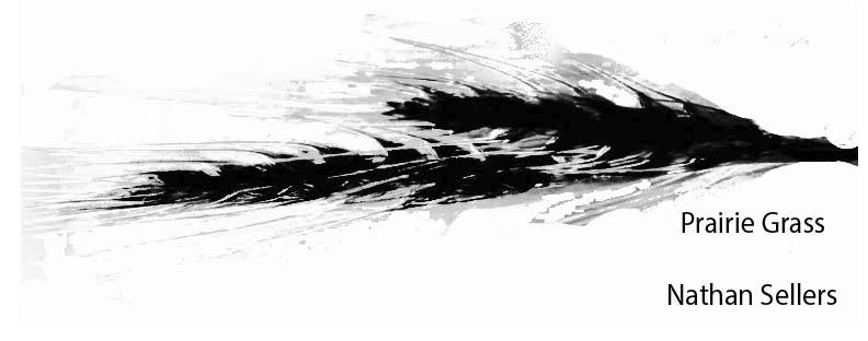 grass-01_edited.jpg